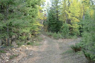 NHN POSTUM CAMP ROAD, Trego, MT 59934 - Photo 1