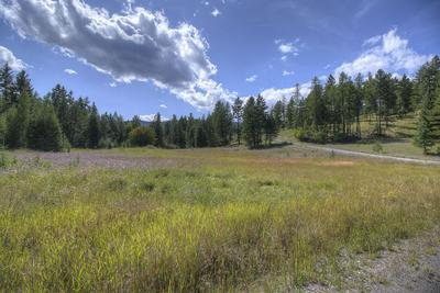 410 BLACKTAIL HEIGHTS RD, Lakeside, MT 59922 - Photo 1