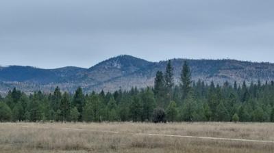 NHN BLIXIT CREEK ROAD, Bonner, MT 59823 - Photo 1