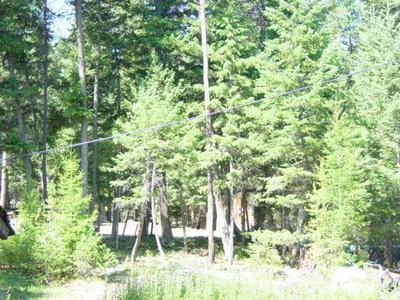 325 WILDEBEEST LN, Marion, MT 59925 - Photo 1