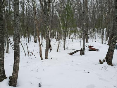 00 COTTAGE, Brownfield, ME 04010 - Photo 1