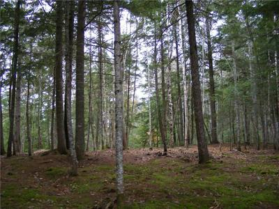 LOT 3 WYTOPITLOCK LAKE-PENINSULA, Glenwood, ME 04497 - Photo 1