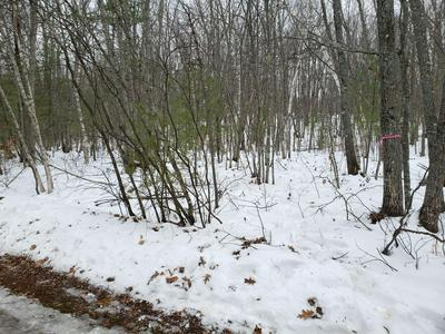 00 COTTAGE, Brownfield, ME 04010 - Photo 2