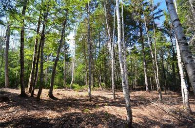 LOT 2 WYTOPITLOCK LAKE-PENINSULA, Glenwood, ME 04497 - Photo 1