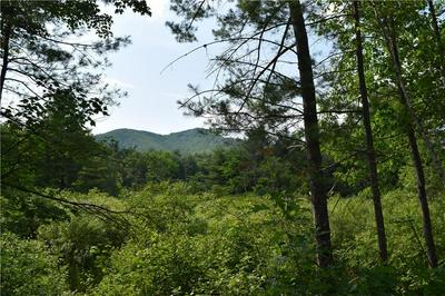 LOT 1B SPRING, Brownfield, ME 04010 - Photo 1