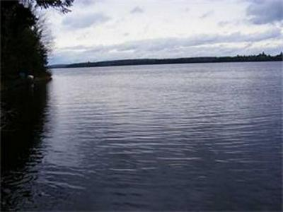 LOT 4 WYTOPITLOCK LAKE -PENINSULA, Glenwood, ME 04497 - Photo 1