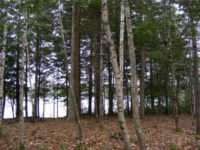 LOT 3 WYTOPITLOCK LAKE-PENINSULA, Glenwood, ME 04497 - Photo 2