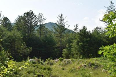 LOT 1B SPRING, Brownfield, ME 04010 - Photo 2