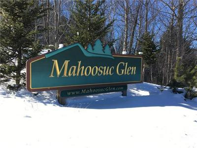 29 MAHOOSUC GLEN SUBDIVISION, Newry, ME 04261 - Photo 1