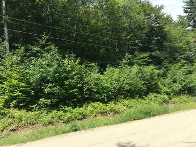 LOT 83&78 BEECH, Greenwood, ME 04255 - Photo 1