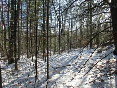 R06-008 PEQUAWKET TRAIL, Brownfield, ME 04010 - Photo 1