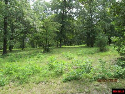 FOSTER DRIVE, Midway, AR 72651 - Photo 2