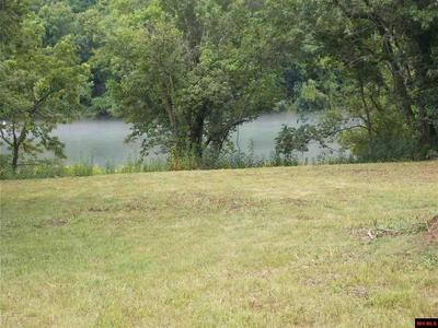 SCARLET OAKS LANE, Cotter, AR 72626 - Photo 1