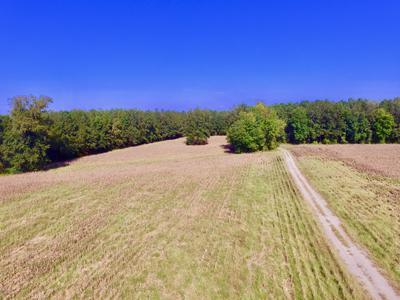 0 WHICHARD CHERRY LANE ROAD, Stokes, NC 27884 - Photo 2