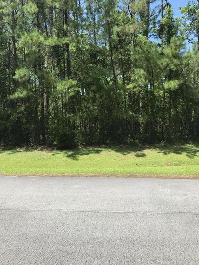 142 CUMMINS CREEK RD, Beaufort, NC 28516 - Photo 2