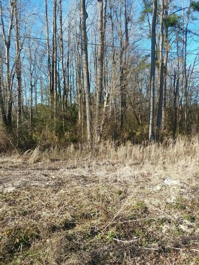 LOT 88 STATE RD 1200 ROAD, Pinetops, NC 27864 - Photo 1