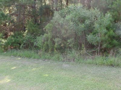 127 GARBACON DR, Beaufort, NC 28516 - Photo 2