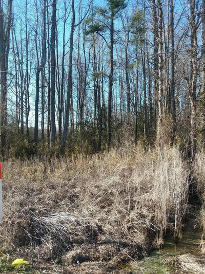 LOT 88 STATE RD 1200 ROAD, Pinetops, NC 27864 - Photo 2