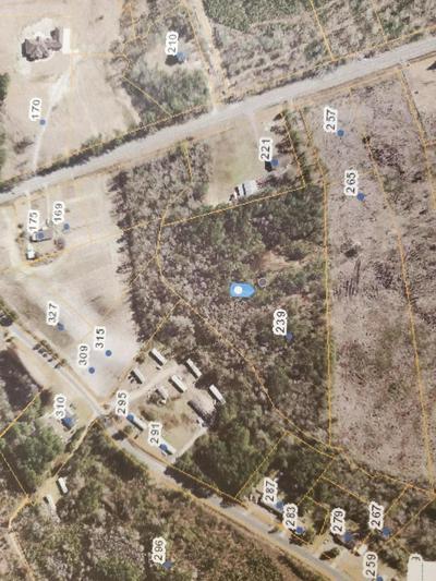 239 GEORGE II HWY SE, Winnabow, NC 28479 - Photo 2