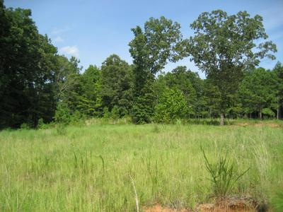 LOT 30 OAK GROVE ESTATES, Ripley, MS 38663 - Photo 2