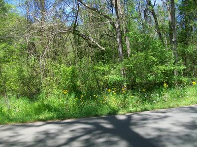 (2.06 ACRES) NORTH ST., Shannon, MS 38868 - Photo 2