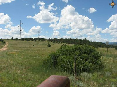 105+/-AC STATE ROAD 442, Rainsville, NM 87736 - Photo 2