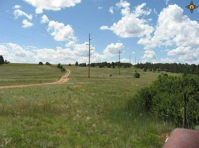 105+/-AC STATE ROAD 442, Rainsville, NM 87736 - Photo 1