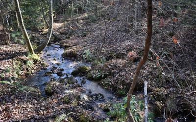 2 CEDAR LN, Morganton, GA 30560 - Photo 2