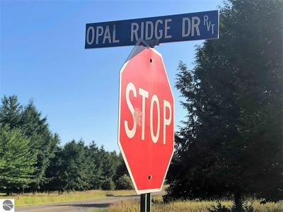 LOT 45 OPAL RIDGE DRIVE, Onekama, MI 49675 - Photo 2