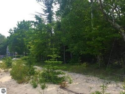 N FOREST BEACH SHORES, Northport, MI 49670 - Photo 2