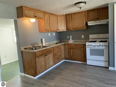 402 N CARLAND ST, Marion, MI 49665 - Photo 2