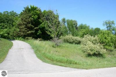 100 TERRACE LANE CMNS, Leland, MI 49654 - Photo 2