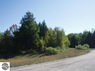 WILDFLOWER LANE, Onekama, MI 49675 - Photo 1