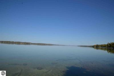 00 S EAST TORCH LAKE DRIVE, Bellaire, MI 49615 - Photo 2