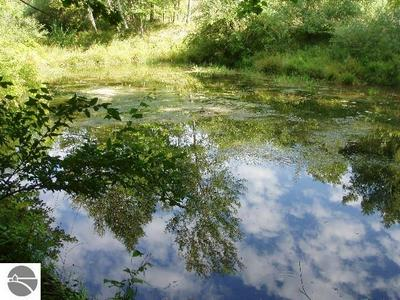 WILDFLOWER LANE, Onekama, MI 49675 - Photo 2