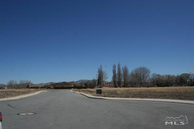 401 CASCADE CT, Yerington, NV 89447 - Photo 2