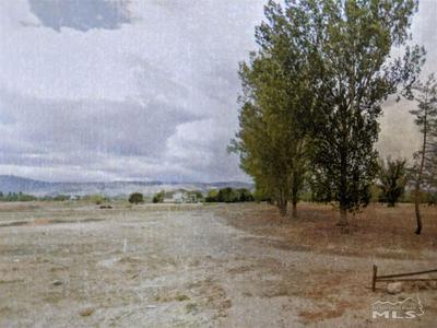 155 NV STATE ROUTE 208, Yerington, NV 89447 - Photo 1