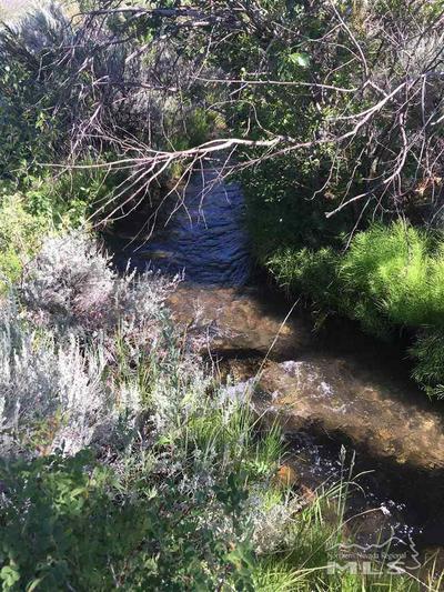 324 N RIVER LN, Walker, CA, CA 96107 - Photo 2