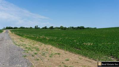 PARCEL 6 SAUNDERS COUNTY ROAD, Ceresco, NE 68017 - Photo 1