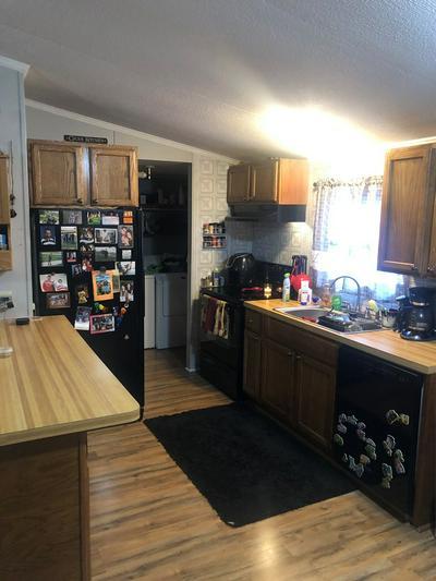 6525 FOSTER RD, Knottsville, KY 42366 - Photo 2