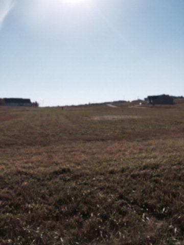 344 HICKORY DR, Beaver Dam, KY 42320 - Photo 1