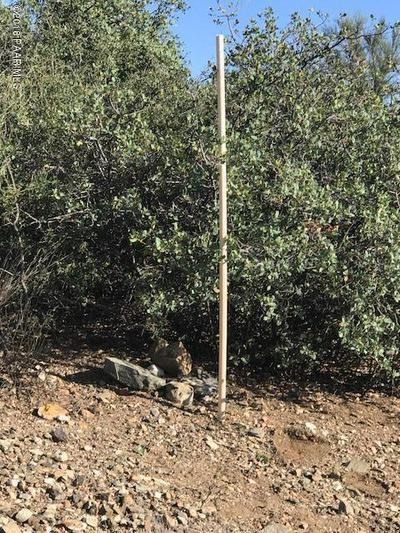 10663 S SAGUARO DR, Mayer, AZ 86333 - Photo 2