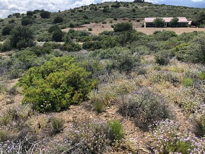 10901 S RENEGADE WAY, Mayer, AZ 86333 - Photo 2