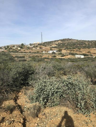 10585 S LOIS LN, Mayer, AZ 86333 - Photo 2