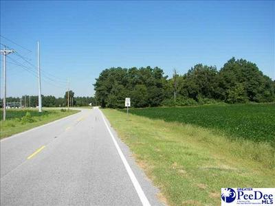 TBD BEAUTY SPOT ROAD, Bennettsville, SC 29512 - Photo 1