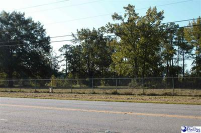HWY 15-401 BY PASS WEST, Bennettsville, SC 29512 - Photo 1