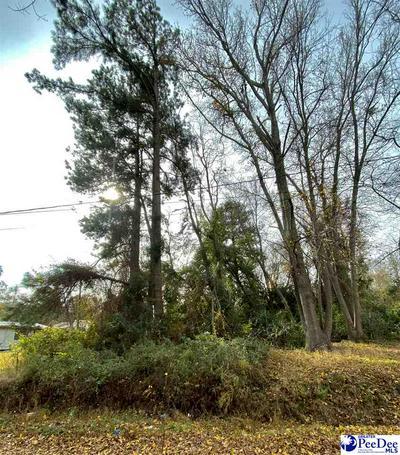 TBD DURHAM STREET, Bennettsville, SC 29512 - Photo 2
