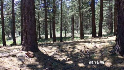 105 JUNIPER RD, Chilcoot, CA 96105 - Photo 2