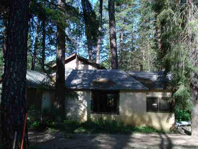 26664 FEATHER RIVER HWY, Twain, CA 95984 - Photo 1