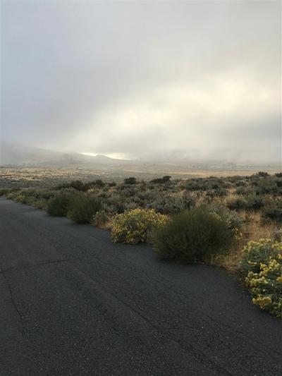 43 RIDGECREST LN, Chilcoot, CA 96105 - Photo 1